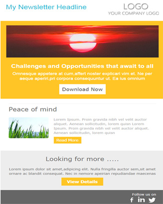 Newsletter Yellow Theme
