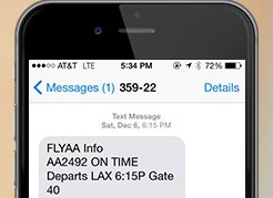 American Airlines SMS messages Example