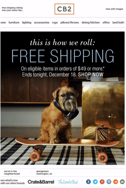 Free Shipping Email Example